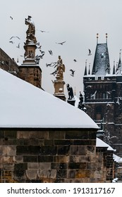 snow-covered street lights on Charles Bridge and a flock of seagulls in the sky near the bridge on the Vltava river in the center of Prague during the winter day and the bridge tower in the background