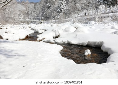 Snow-covered winter forest and brook (Odaesan national park , Gangwon-do, Korea)