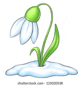 Snowdrop Cartoon Illustration - Bitmap Clipart