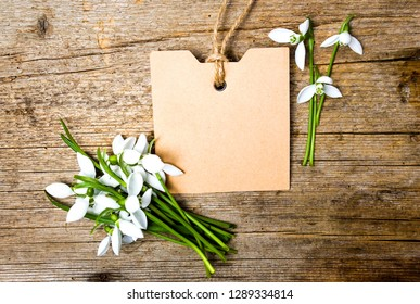 Snowdrop flowers and an empty note card on wooden background