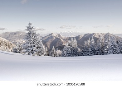 Snowed mountain range with trees in front