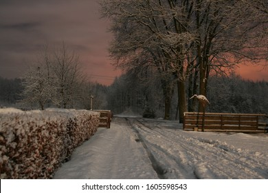 Snowed road in countryside, goes to the forest through gate in wooden fence. Night winter landscape just after sunset.
