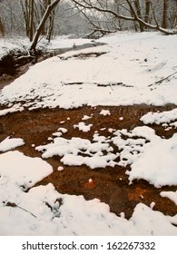 Snowfall along a small tributary of the Kishwaukee River in northern Illinois