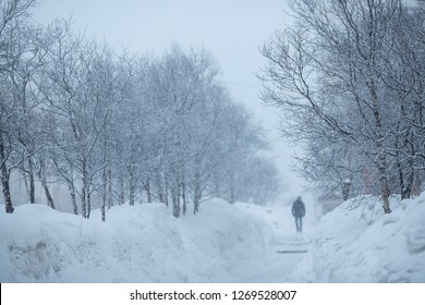 Snowfall in the city. On the sidewalk is a man. Around the trees and large drifts. Cold winter weather. Overcast and snowy. Magadan, Far East of Russia. Perfect for background.
