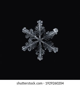 Snowflake close up on a black background