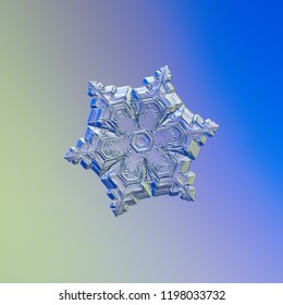Snowflake glittering on blue gradient background. Macro photo of real snow crystal: elegant star plate with fine hexagonal symmetry, short ornate arms, glossy relief surface and complex inner pattern.