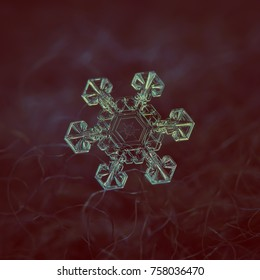 Snowflake glittering on dark background. Macro photo of real snow crystal: large star plate with six short, broad arms, fine hexagonal symmetry and unusual pattern inside transparent central hexagon.
