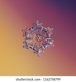 Snowflake glittering on smooth gradient background. Macro photo of real snow crystal: star plate with hexagonal symmetry and glossy relief surface. Photograph in natural conditions at low temperature.