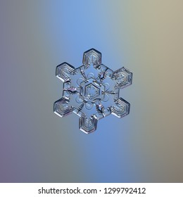 Snowflake glittering on smooth gradient background. Macro photo of real snow crystal: elegant star plate with short ornate arms, hexagonal symmetry, glossy relief surface and complex inner pattern.