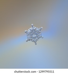 Snowflake glittering on smooth gradient background. Macro photo of real snow crystal: elegant star plate with fine hexagonal symmetry, short ornate arms, glossy relief surface, complex inner pattern.