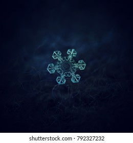 Snowflake glowing on dark blue textured background. Macro photo of real snow crystal: star plate snowflake with short, simple arms and big, transparent center with unusual pattern inside.