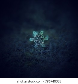 Snowflake glowing on dark textured background. Macro photo of real snow crystal: star plate snowflake with short, simple arms and large, transparent center with beautiful inner pattern.