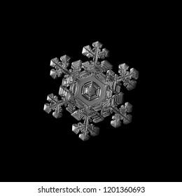Snowflake isolated on black background. Macro photo of real snow crystal: elegant star plate with fine hexagonal symmetry, short ornate arms, glossy relief surface and complex inner details.