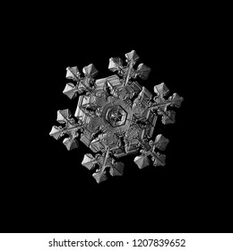 Snowflake isolated on black background. Macro photo of real snow crystal: elegant star plate with fine hexagonal symmetry, six short, broad arms and glossy relief surface with complex inner details.