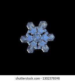 Snowflake isolated on black background. Macro photo of real snow crystal: complex star plate with fine hexagonal symmetry, glossy relief surface, six short, ornate arms and elegant inner details.