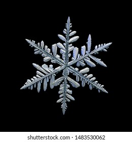 Snowflake isolated on black background. Macro photo of real snow crystal: beautiful stellar dendrite with hexagonal symmetry, glossy relief surface, complex inner details and six complex, ornate arms.