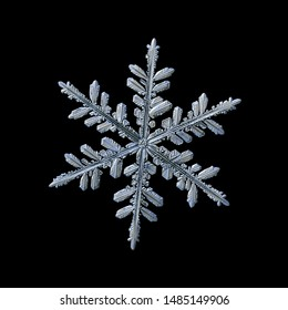 Snowflake isolated on black background. Macro photo of real snow crystal: elegant stellar dendrite with fine hexagonal symmetry, glossy relief surface, complex structure and six thin, ornate arms.