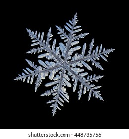 Snowflake isolated on black background: macro photo of real snow crystal, captured on glass with LED back light. This is large fernlike dendrite snowflake with complex structure and lots of details.