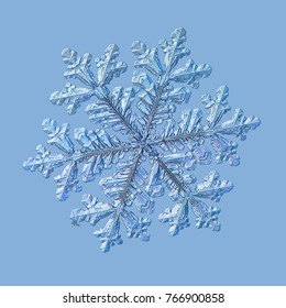 Snowflake isolated on uniform blue background. Macro photo of real snow crystal: large stellar dendrite with fine hexagonal symmetry, long elegant arms with side branches and glossy relief surface.