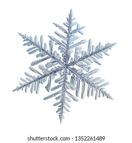 Snowflake isolated on white background. Macro photo of real snow crystal: elegant stellar dendrite with hexagonal symmetry, glossy relief surface, complex inner details and six thin, ornate arms.