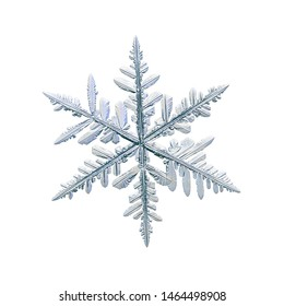 Snowflake isolated on white background. Macro photo of real snow crystal: elegant stellar dendrite with fine hexagonal symmetry, glossy relief surface, complex details and six thin, fragile arms.
