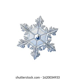 Snowflake isolated on white background. Macro photo of real snow crystal: elegant star plate with glossy surface, complex inner details and six short, flat arms.