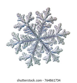Snowflake isolated on white background. Macro photo of real snow crystal: very big stellar dendrite with six long, ornate arms with side branches, fine hexagonal symmetry and glossy relief surface.