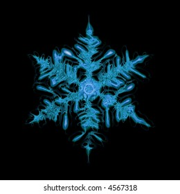 snowflake on the black background