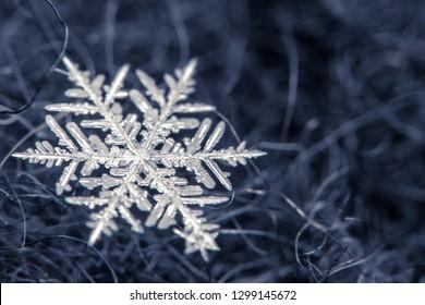 Snowflake on blur background - macro photo
