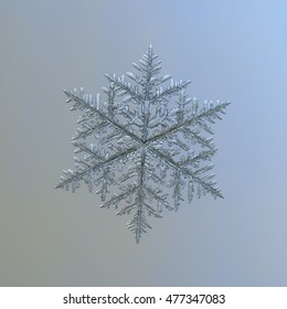 Snowflake on gray background. This is macro photo of real snow crystal: very big dendrite (around 8 millimeters from tip to tip) with complex structure, lots of  side branches and good symmetry.