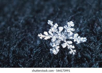 Snowflake under the microscope