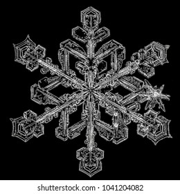 Snowflakes on black background. Macro photo of real snow crystals.