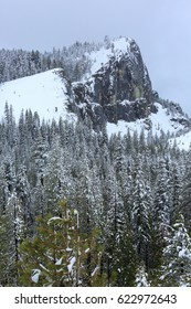 Snowing day at the Sierra California