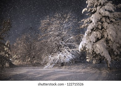 Snowing Night winter scene in park, dancing shadows on snow. Christmas mood