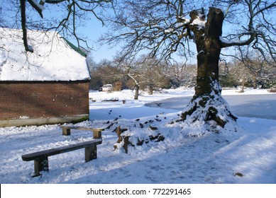 Snowing in Walthamstow, London
