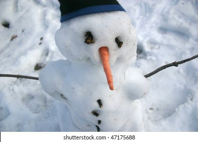 A Snowman with a carrot nose and a toque (stocking cap).