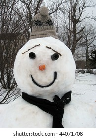 A Snowman in the Heart of winter.