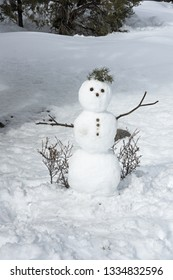 snowman with stick arms and pine needle hair