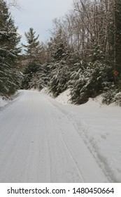snowmobile trail during winter in Maine