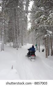 Snowmobile Trail Ride 3