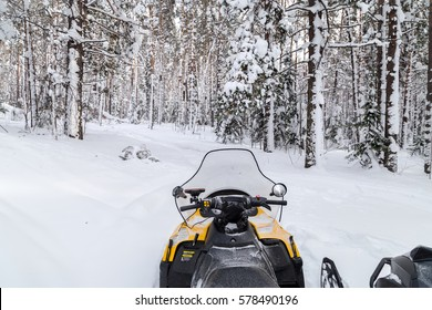 Snowmobile is in the winter forest but the trail.