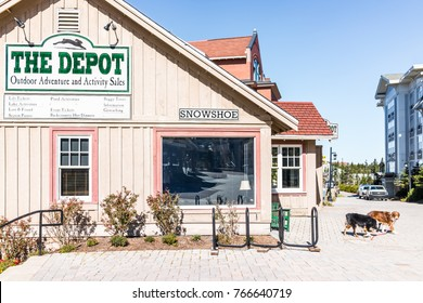 Snowshoe, USA - October 18, 2017: Sign for Depot store for outdoor adventure, activity sales, lift tickets, season passes in famous resort town village in West Virginia, and two dogs