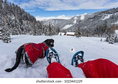 Snowshoe walker with dog in powder snow. Outdoor winter activity and healthy lifestyle