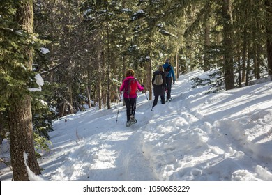 Snowshoe walkers in snow. Sandia Peak, albuquerque, new mexico.