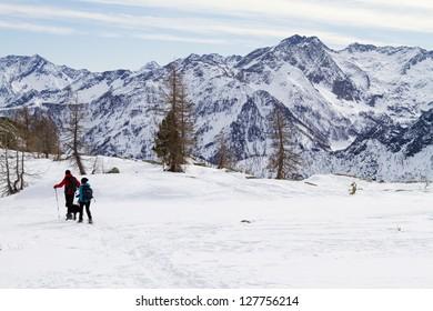 snowshoeing in mount avic park