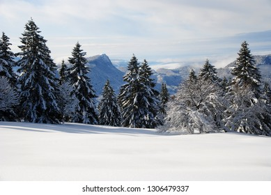 snowshoeing on the snowy slopes of Entre-les-fourgs - Doubs - Franche-Comté - France - Facing the Mont d'Or
