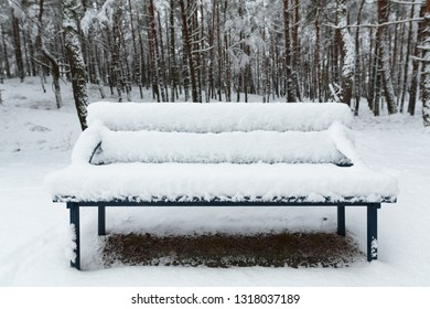 Snowy bench in the park.