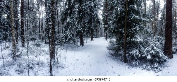 Snowy bicycle roads, Uppsala, Sweden