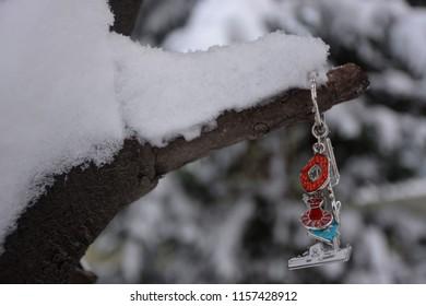 snowy branch, winter,