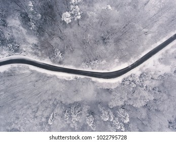 snowy countryroad in winter
